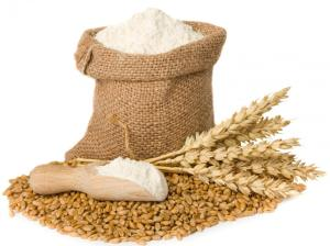 gandum-dan-tepung-gandum