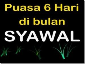 puasa-syawal_thumb[2]